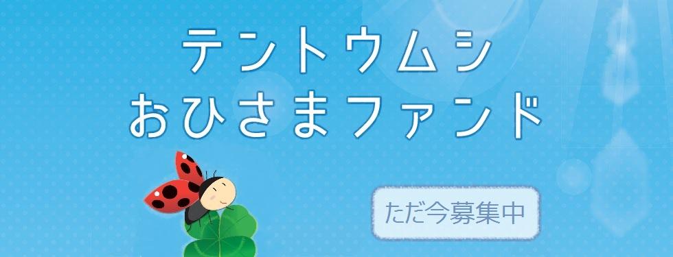 「テントウムシおひさまファンド」の募集が始まりました!